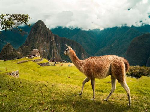 Special Inca Trail
